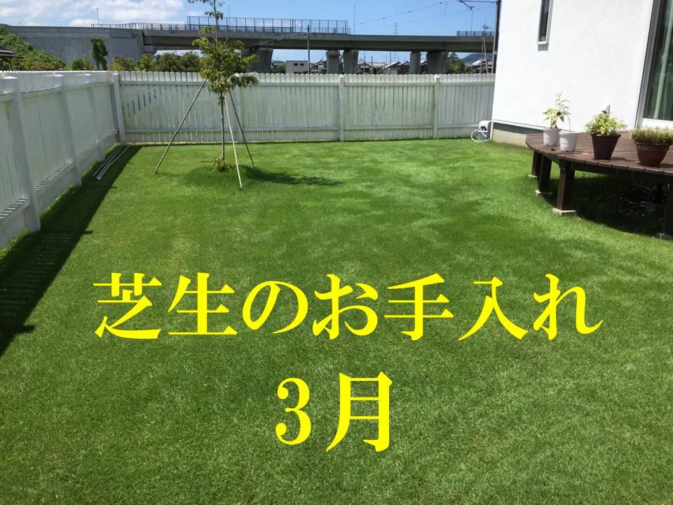3月の芝生のお手入れ